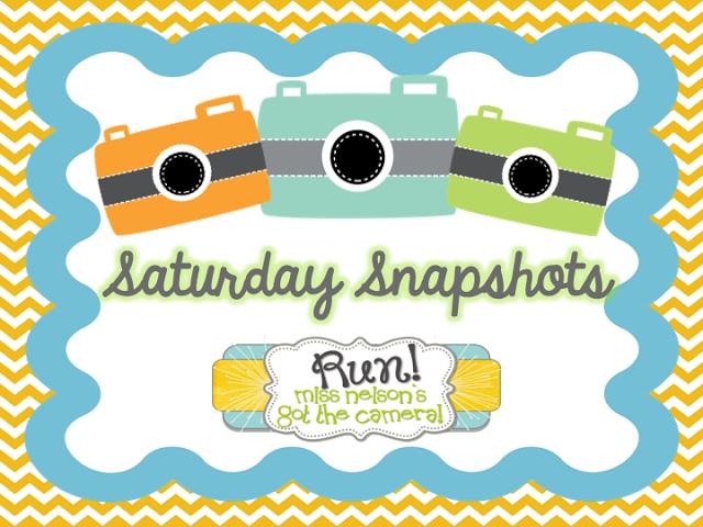 Saturday Snapshots
